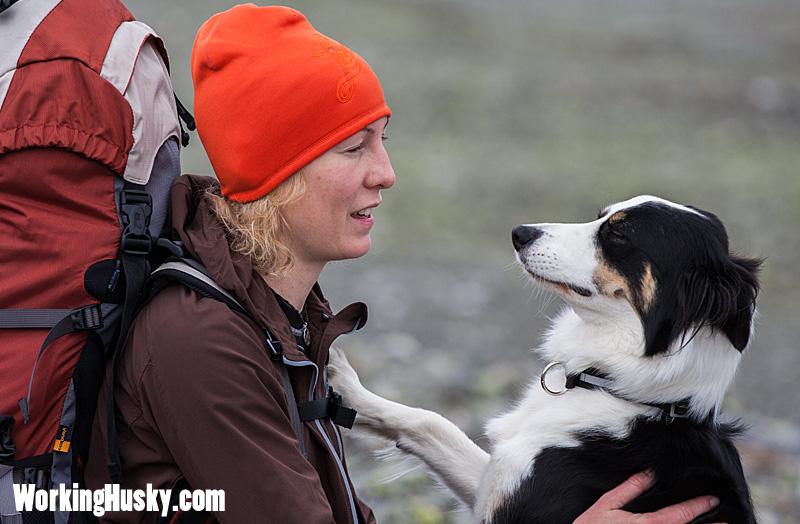 Fjällvandring_tur_med_hund_2
