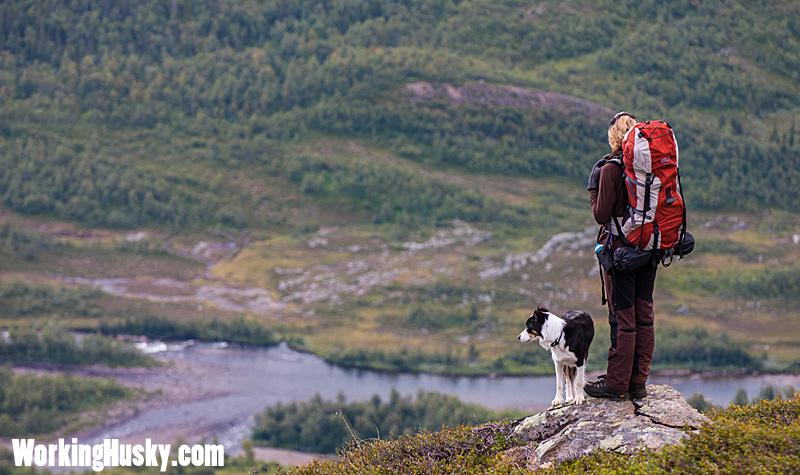 Fjällvandring_tur_med_hund_4